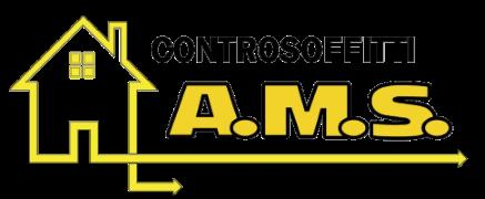 A.M.S. SRLS